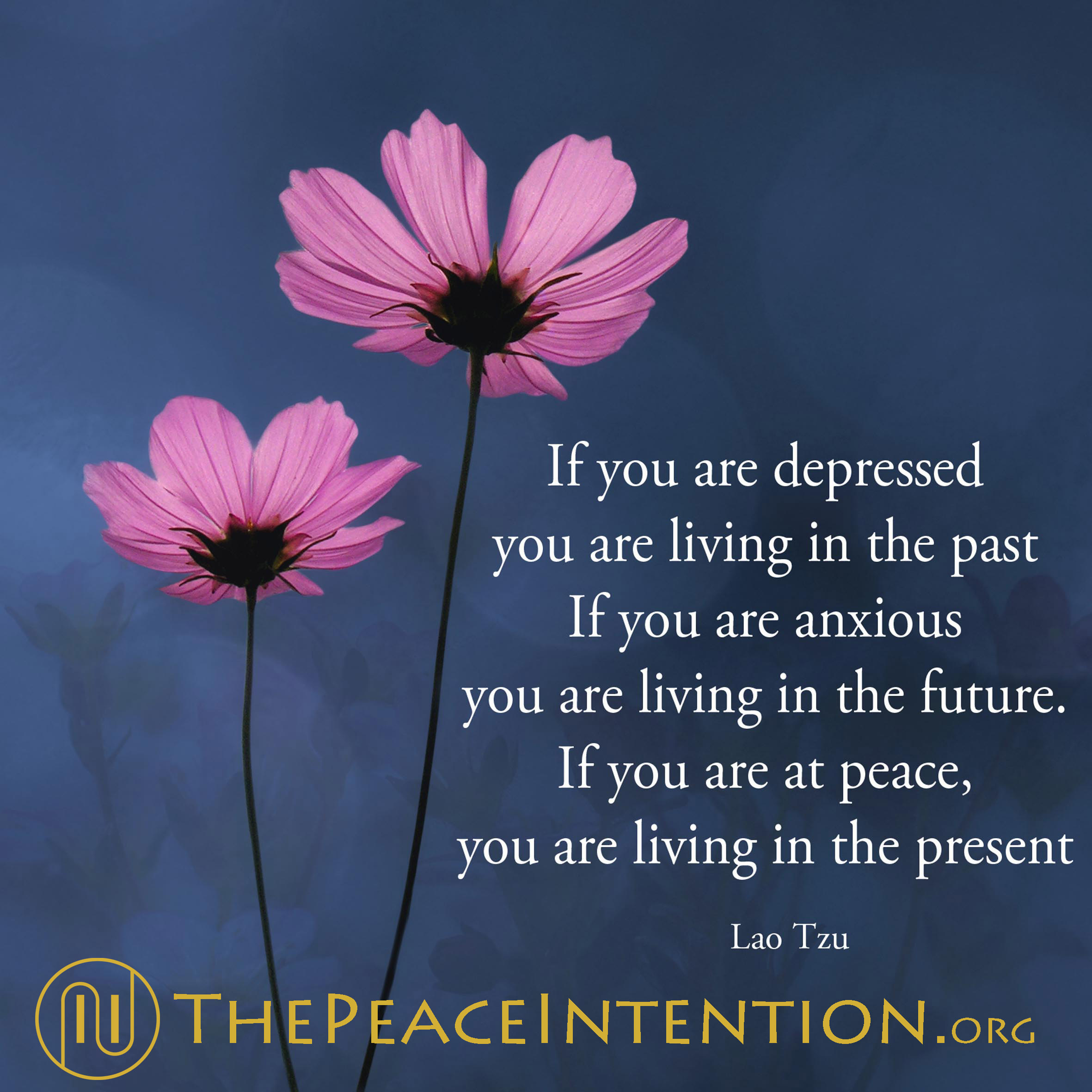 Quotes About Peace And Love Inner Peace Quotes  The Peace Intention